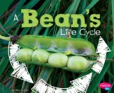 Bean Life Cycle